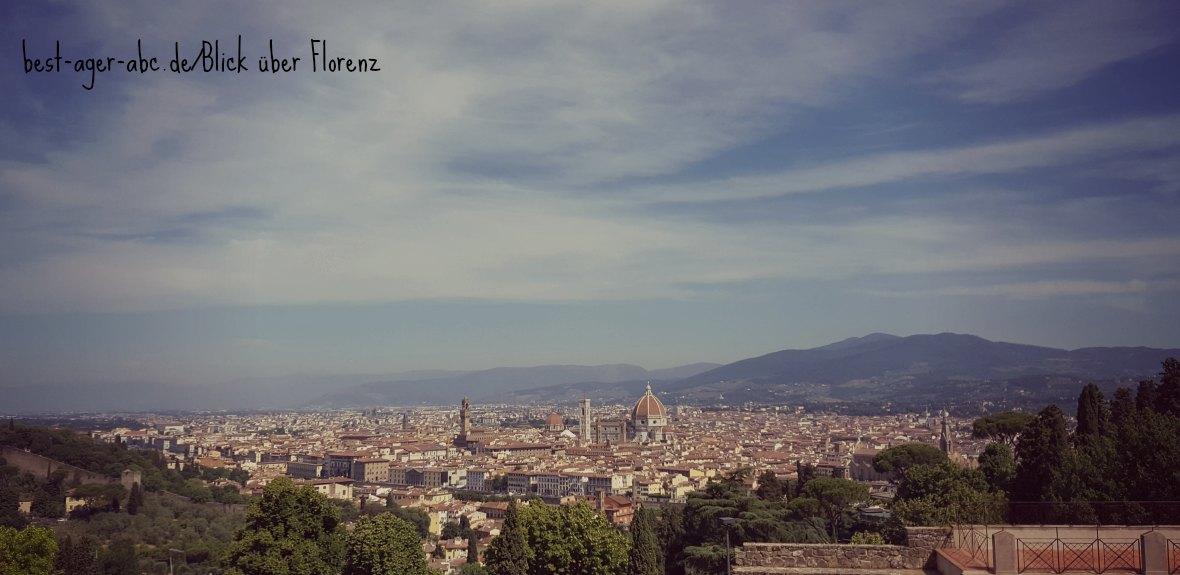 überwältigender Blick über Florenz
